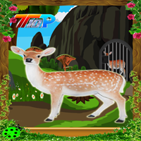 play Top10 Rescue The Spotted Deer