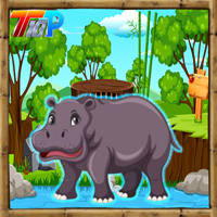 Top10 Rescue The Hippopotamus game