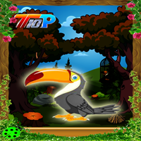 Top10 Rescue The Toucan game