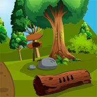 play Top10Newgames Rescue The Toucan
