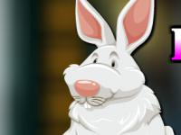 play Fluffy Rabbit Escape