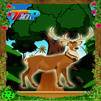 play Top10 Rescue The Deer