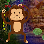 play Little Monkey Escape