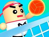 play 3D Amazing Volleyball