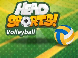 Head Sports Volleyball game