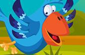 Fun Birds Hidden Stars game