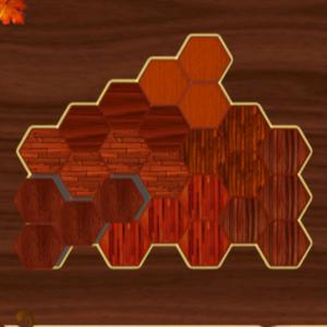 play Woody Block Hexa Puzzle