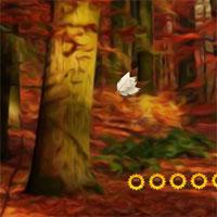 play Thanksgiving Forest Fun Escape