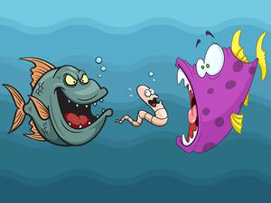 play Angry Fish Coloring