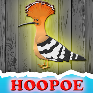 The-Hoopoe-Rescue game