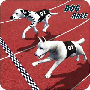 Crazy Dog Racing Fever Game 3D game