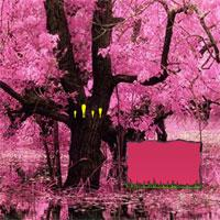 play Lovely Blossom Forest Escape