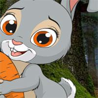 Avm-Little-Funny-Rabbit-Rescue game