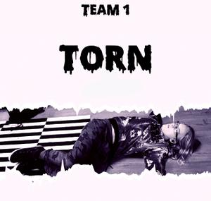 Torn game
