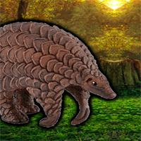Escape Game Save The Pangolin game