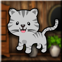 Games2Jolly Tabby Cat Escape game
