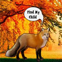 Find The Fox Child game