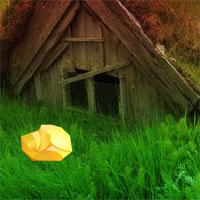 play Cottage Forest Escape
