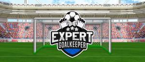 play Expert Goalkeeper