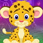 play Pretty Leopard Escape
