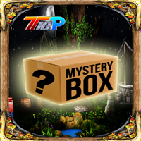 Find The Mystery Mask Box game