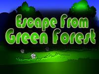 Top10 Escape From Green Forest game