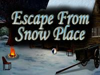 play Top10 Escape From Snow Place