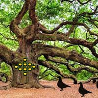play Banyan Forest Escape