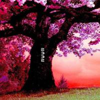 play Fantasy Pink Forest Escape
