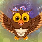 play Joyous Owl Escape