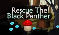 Top10 Rescue The Black Panther game