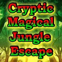 Cryptic Magical Jungle Escape game