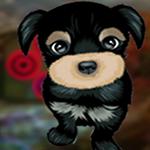 play Modest Puppy Escape