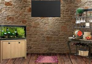 play Rustic Old Room Escape