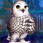play Lovely Owl Escape