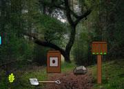 play Treasure Trove Escape From Forest