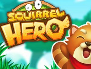 play Squirrel Hero