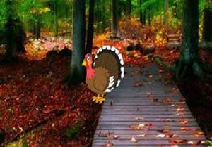 play Thanksgiving Autumn Nature Forest Escape