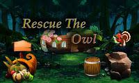 Top10 Rescue The Owl game