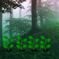 play Magical Misty Forest Escape