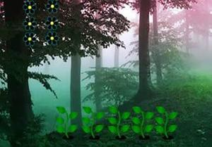 Magical Misty Forest Escape game