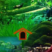 play Fantasy River Fall Forest Escape