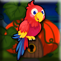 Pretty-Macaw-Escape game