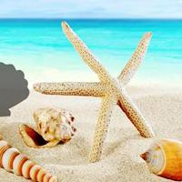 play Fantasy Conch Beach Escape