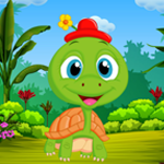 play Palani Comely Turtle Escape