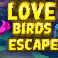 Games4Escape-Love-Birds-Escape game