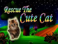 play Top10 Rescue The Cute Cat