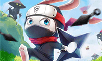 play Ninja Rabbit