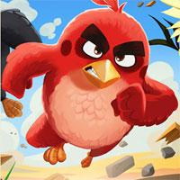 Angry-Birds-Differences-2016 game