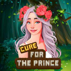 play Hidden Objects Cure For The Prince